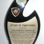 Plaque of Appreciation from the Bureau of Fire Protection - Regional Office No. 7